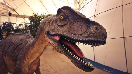 Smart phone photography training dinosaur