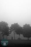 The meadows, mist, Edinburgh