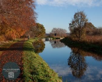 Union canal, autumn